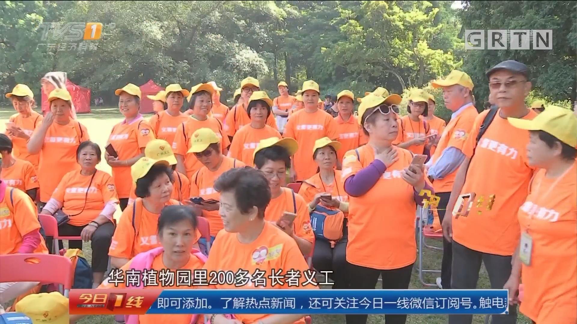 长者义工徒步行:广州首创 长者义工徒步义行