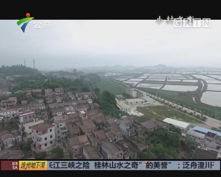 《小村之恋》广海公益——鲲鹏村