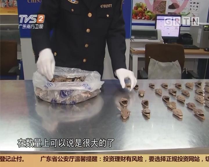 深圳:过关行李箱 暗藏152只动物头!