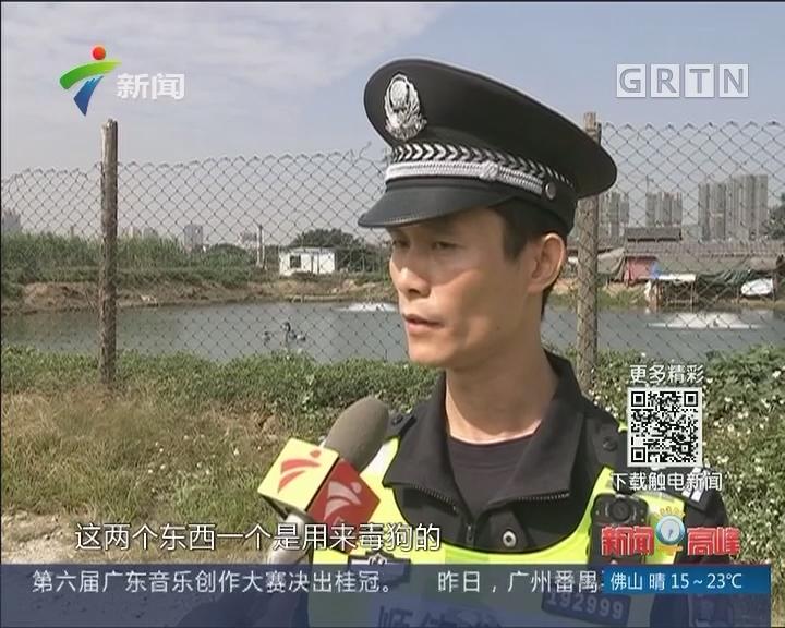 佛山:犬只频失踪 民警布控抓狗贼