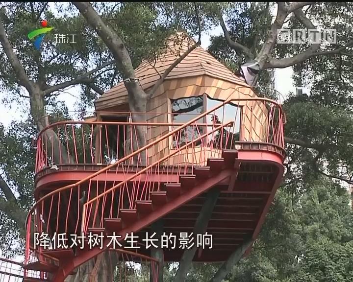 广州建最高树屋 关爱自闭症儿童