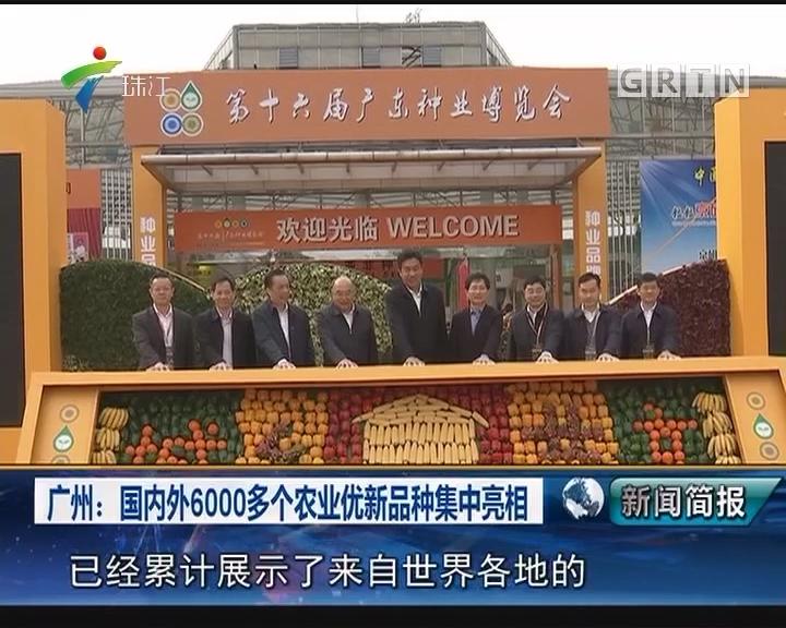 广州:国内外6000多个农业优新品种集中亮相