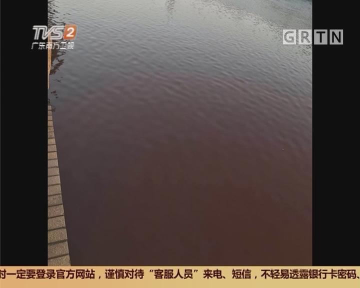 广州:黄埔涌水体变红?执法人员现场调查