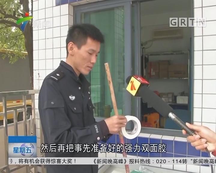 """深圳光明:作案11起 """"双面胶"""" 大盗被抓!"""