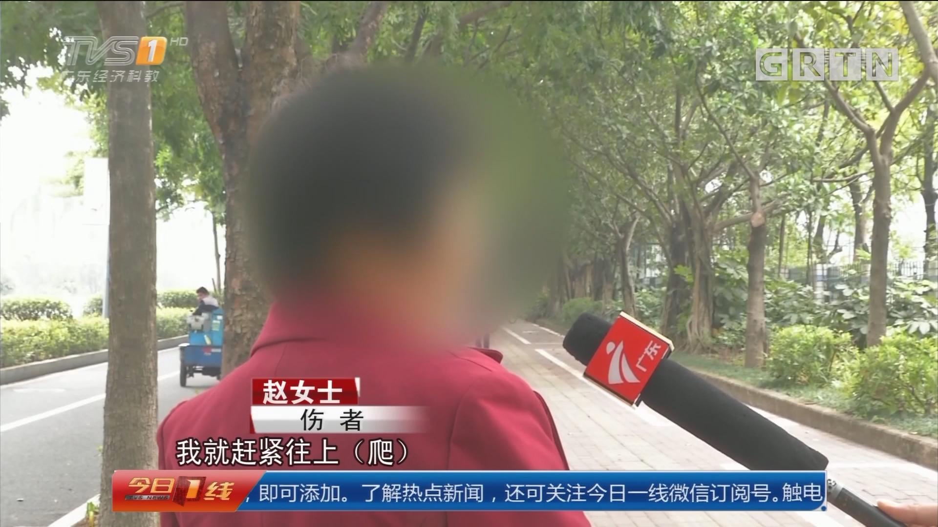 深圳龙岗:人行道突然塌陷 一女子掉入坑中!