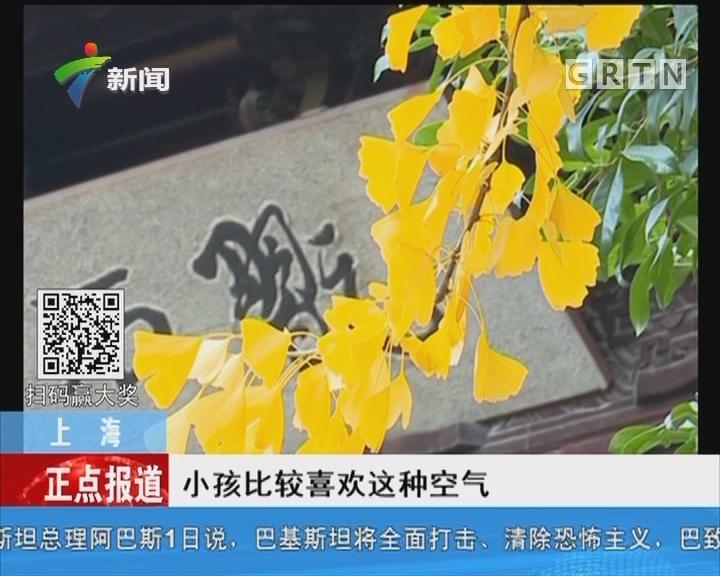 上海:秋冬景色同时呈现 古猗园腊梅提前绽放