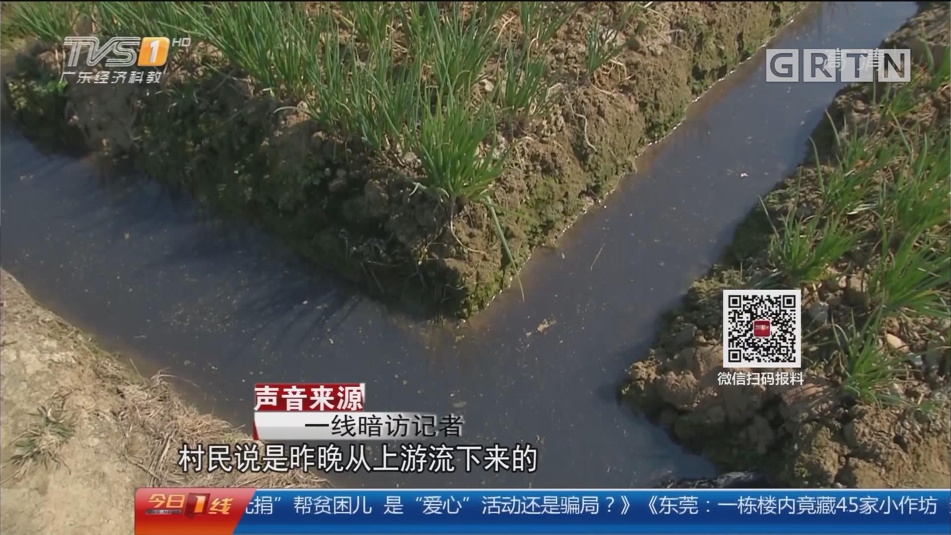 """灌溉水变""""黑"""" 两工厂被立案查处"""