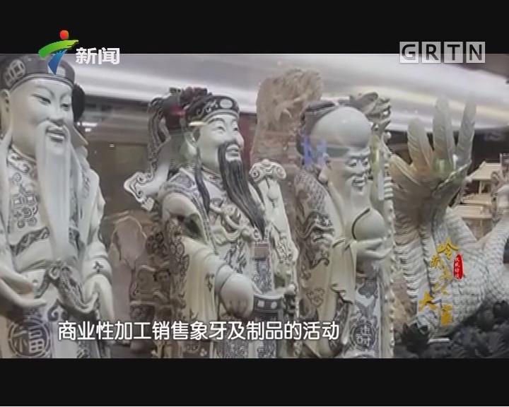 [2017-12-10]权威访谈:张民辉:延续广州牙雕传奇