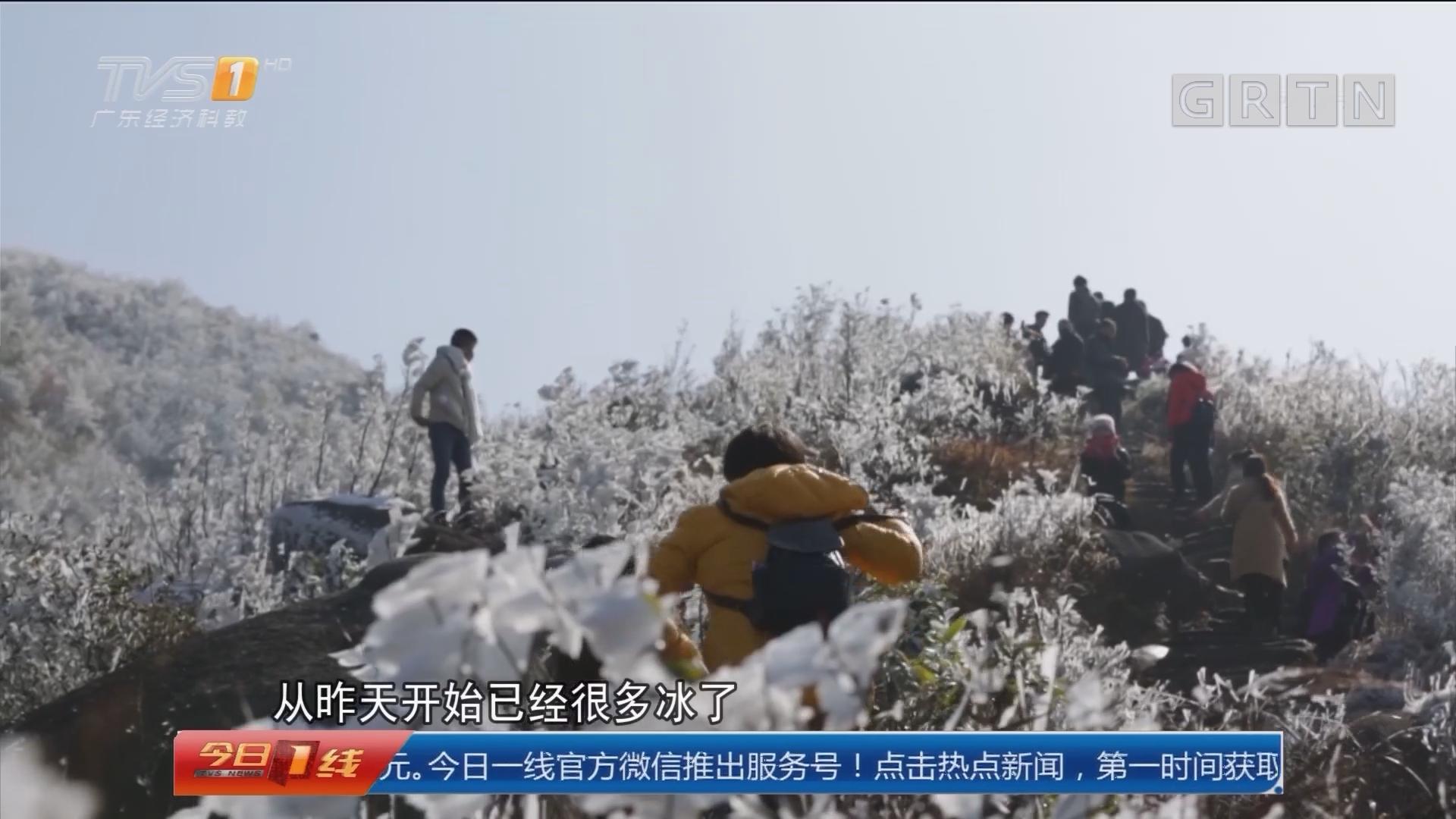 清远连山金子山:美翻了!广东喜迎第一场雪