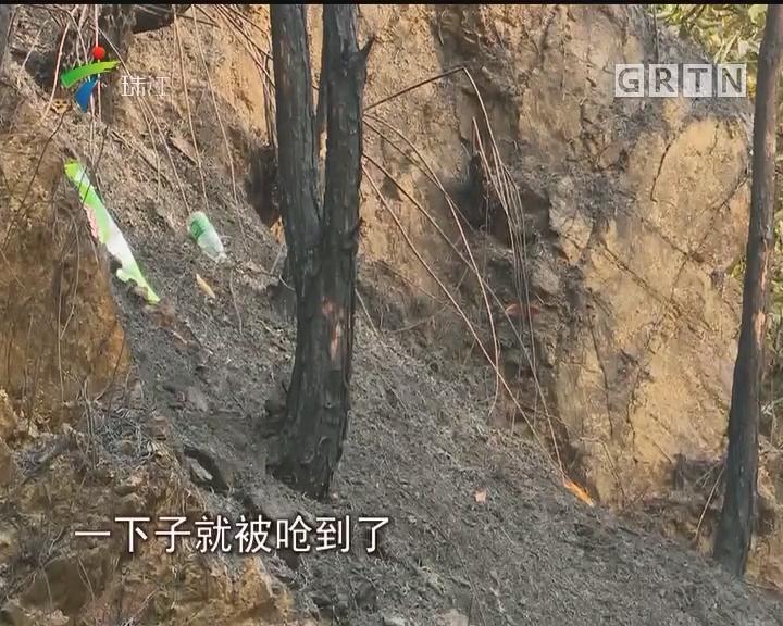 深圳:梧桐山突发火灾 1人因公殉职