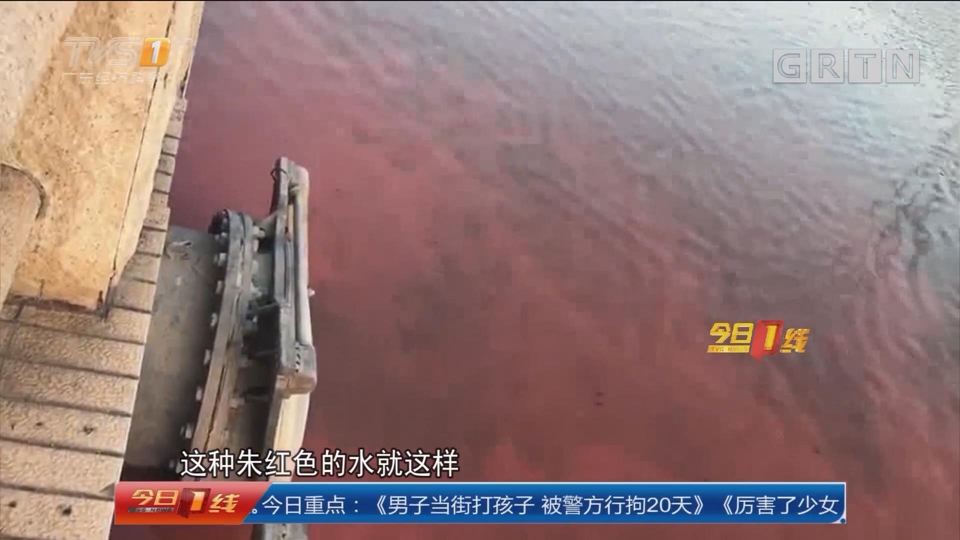 广州:黄埔涌水体变红? 执法人员现场调查