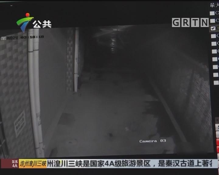 工作:男子凌晨作案 连砸13车盗窃