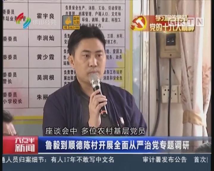 佛山:鲁毅到顺德陈村开展全面从严治党专题调研