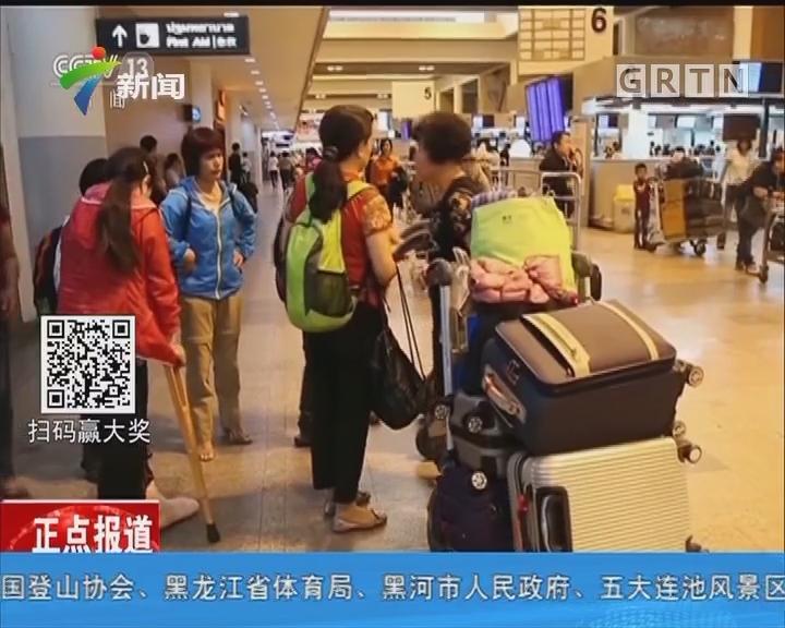 泰国:大象踩踏事故致中国游客一死两伤 我驻泰使密切跟进领保工作