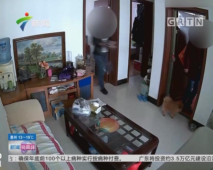 江苏徐州:入室盗窃不忘逗狗 头顶监控全程记录