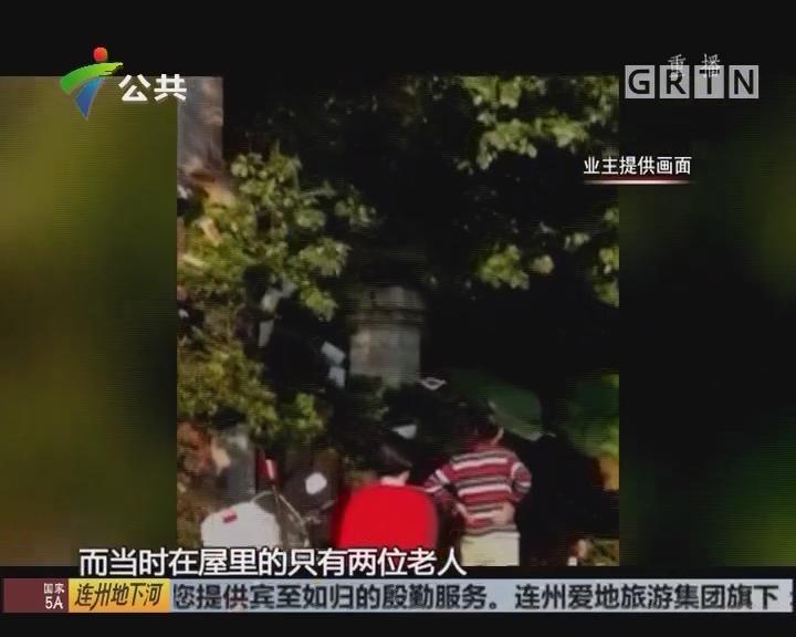 深圳:挂死鸡泼油漆 事件或缘因拆违