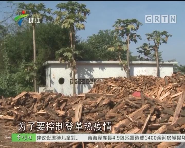 """吴川:村公厕被拆 理由是""""抑制登革热"""""""