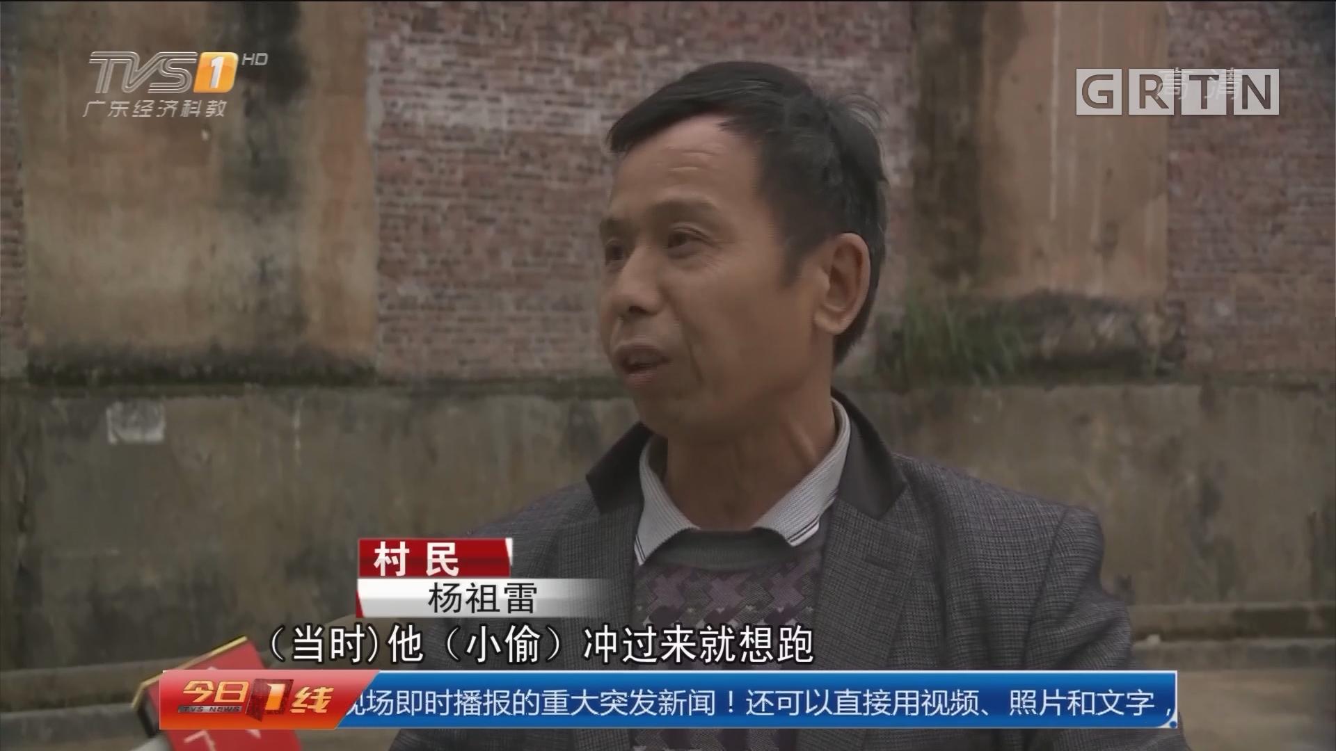 河源龙川:蟊贼进村偷文物 村民以伞退贼