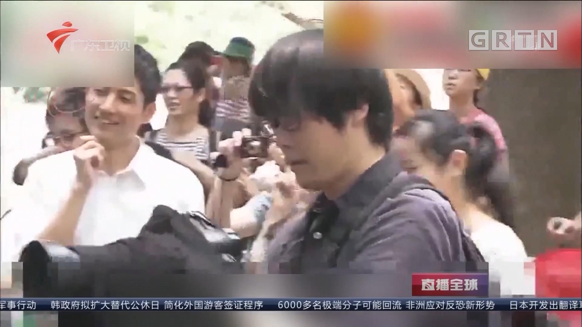 日本人到底有多喜欢熊猫 日本男子沉迷熊猫 每天拍熊猫坚持6年