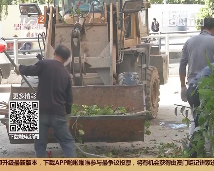 广州白云区:全域环境综合整治 一周清垃圾万吨