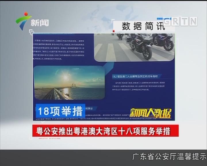 粤公安推出粤港澳大湾区十八项服务举措