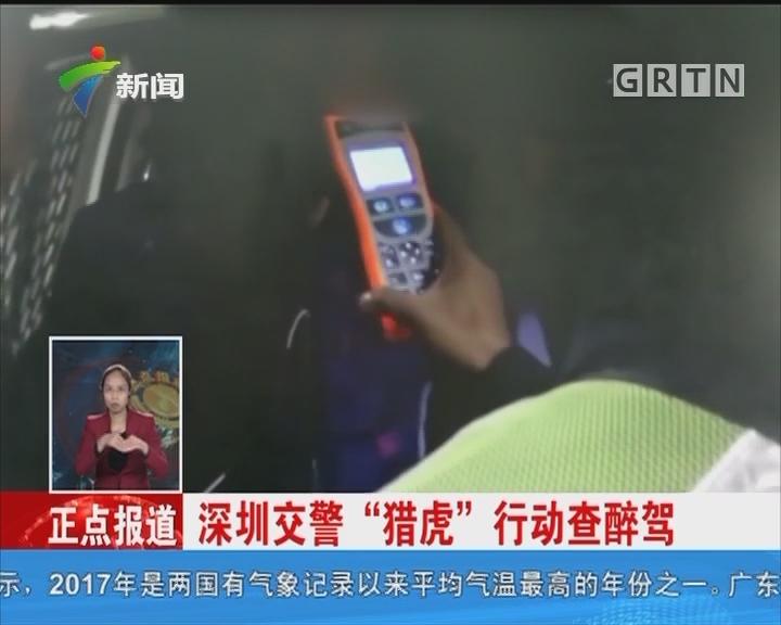 """深圳交警""""猎虎""""行动查醉驾"""