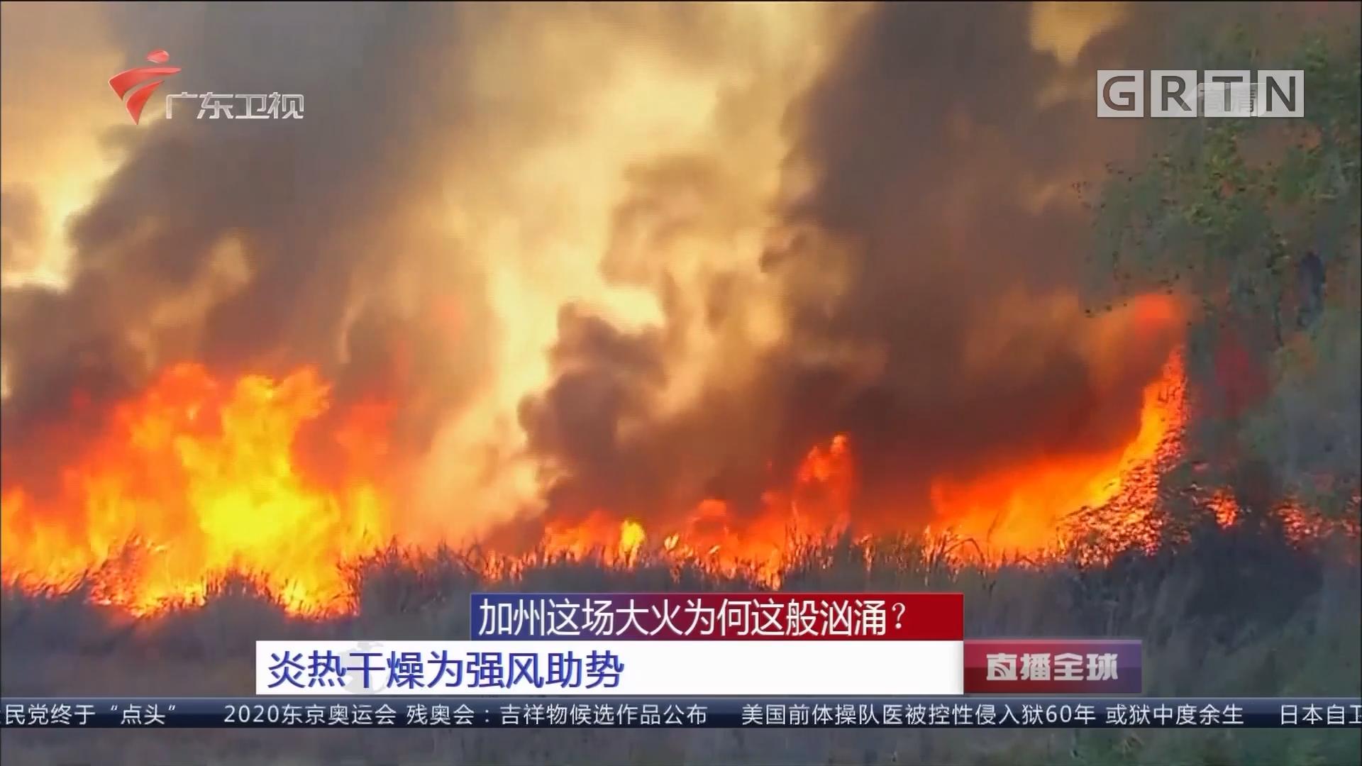 加州这场大火为何这般汹涌? 炎热干燥为强风助势