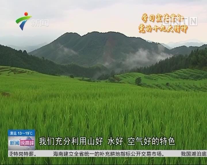 清远连山:推广有机稻种植 贫困户年增收近四千