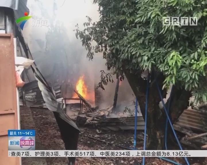 广州白云:养殖场爆竹引火 殃及蛇类