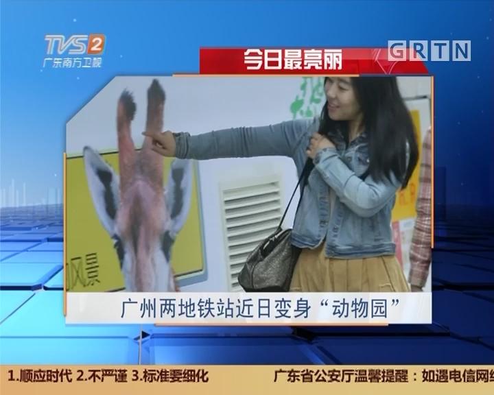 """今日最亮丽:广州两地铁站近日变身""""动物园"""""""