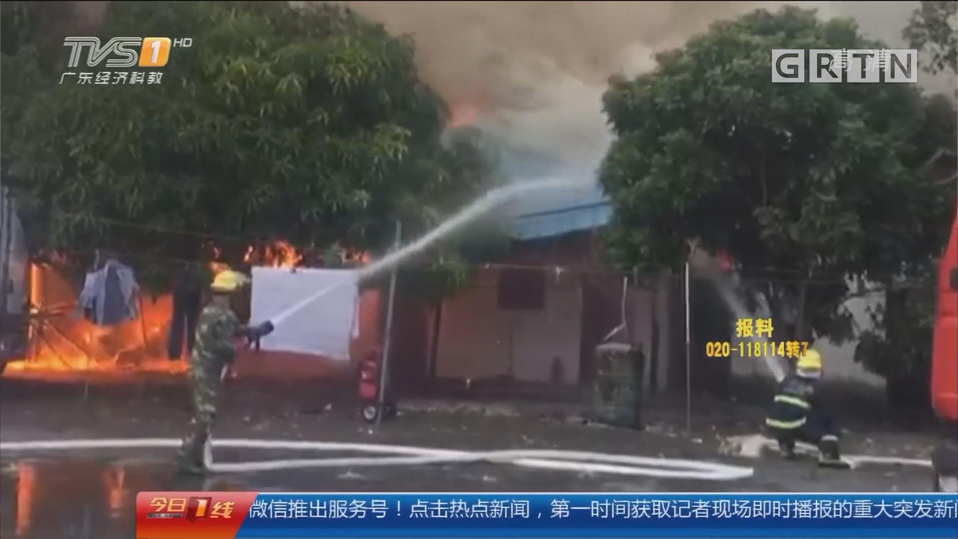 惠州仲恺区:山火威胁化工厂 消防紧急扑救