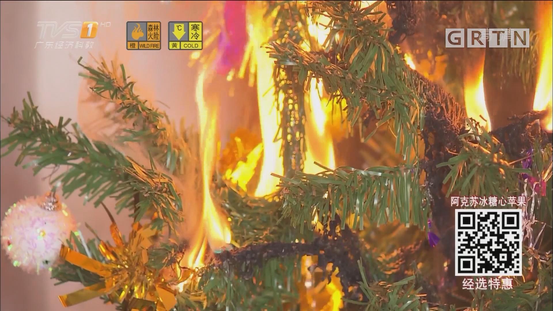 消费实验室:圣诞树易燃 两分钟烧完