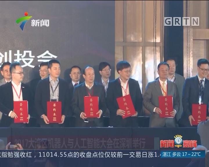 2017大湾区机器人与人工智能大会在深圳举行