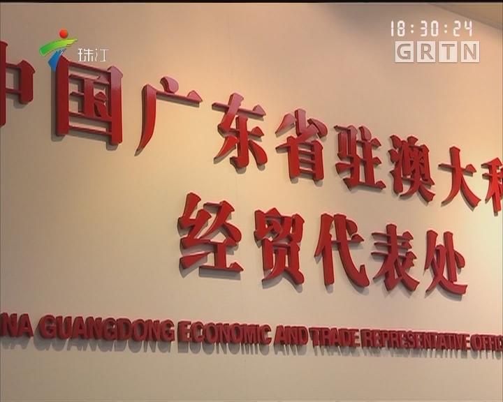"""广东驻澳经贸代表处:粤企在澳洲有了""""家"""""""