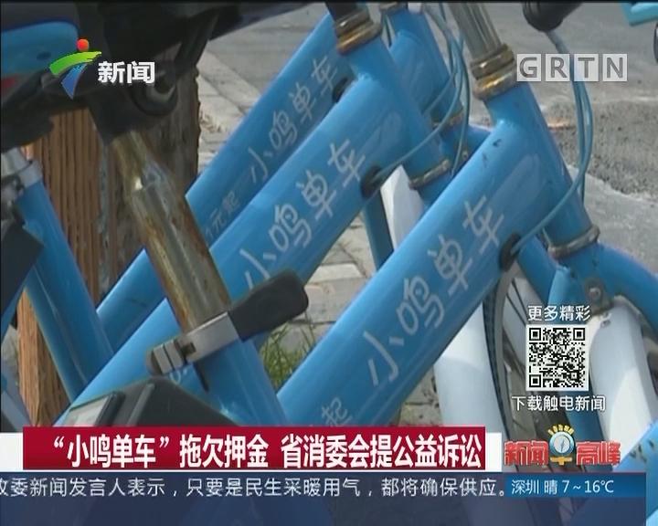 """""""小鸣单车""""拖欠押金 省消委会提公益诉讼"""