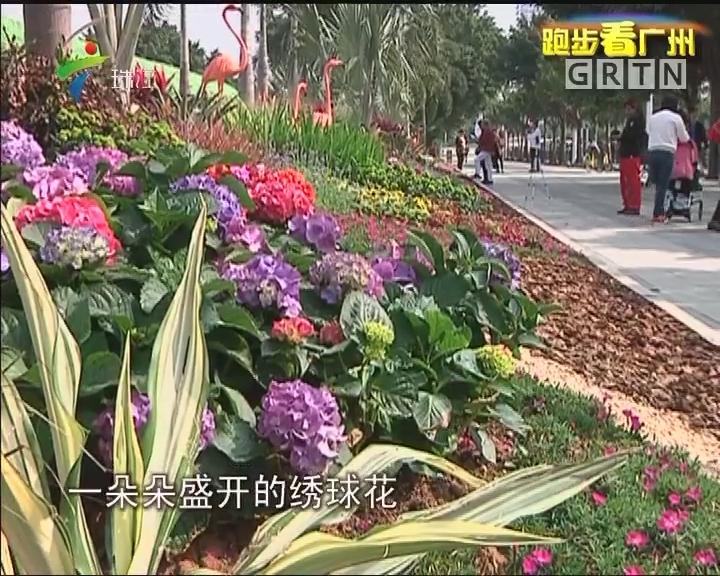 跑步看广州:沿江慢跑 南岸景更新
