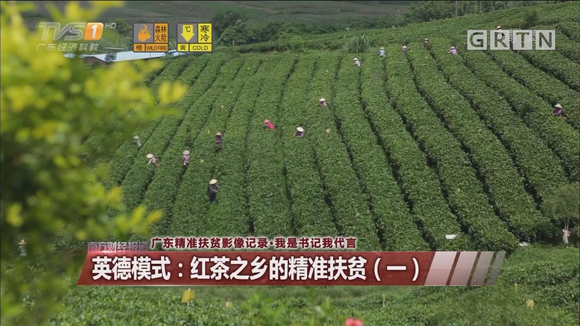 英德模式:红茶之乡的精准扶贫(一)