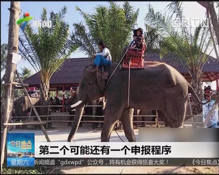 导游被象踩死:为救遇险游客 重庆导游被大象踩踏致死