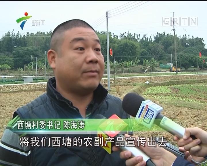从化:稻草节即将开幕 农耕文化浓厚