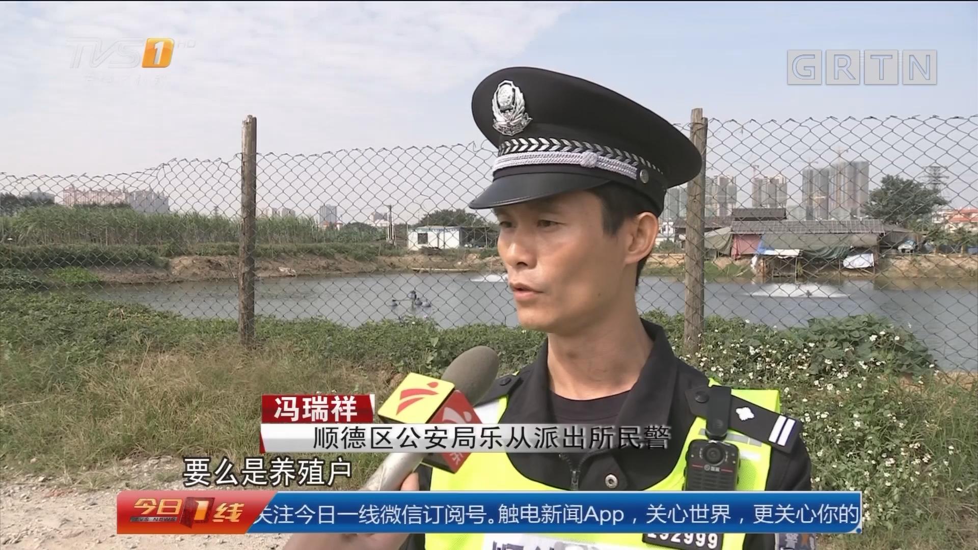 佛山顺德:鱼塘犬只频失踪 民警布控抓狗贼