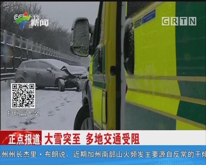英国:大雪突至 多地交通受阻