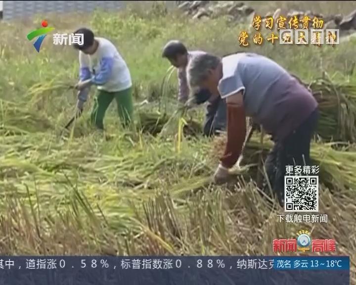"""新时代 新气象 新作为:""""零容忍""""惩治扶贫领域""""微腐败"""""""