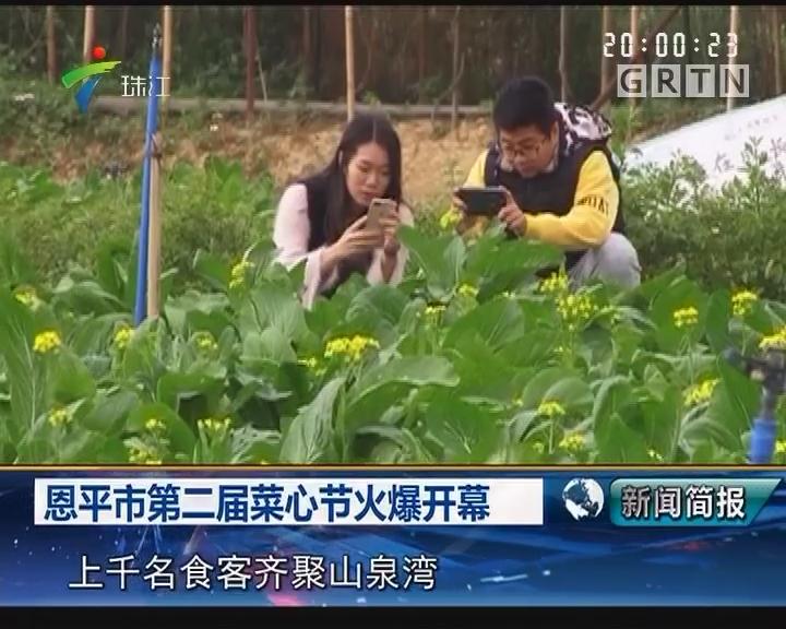 恩平市第二届菜心节火爆开幕