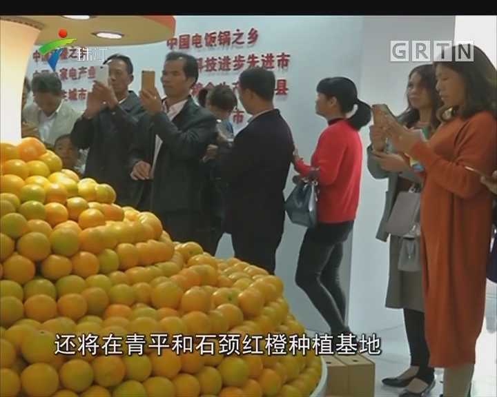 廉江红橙节开幕