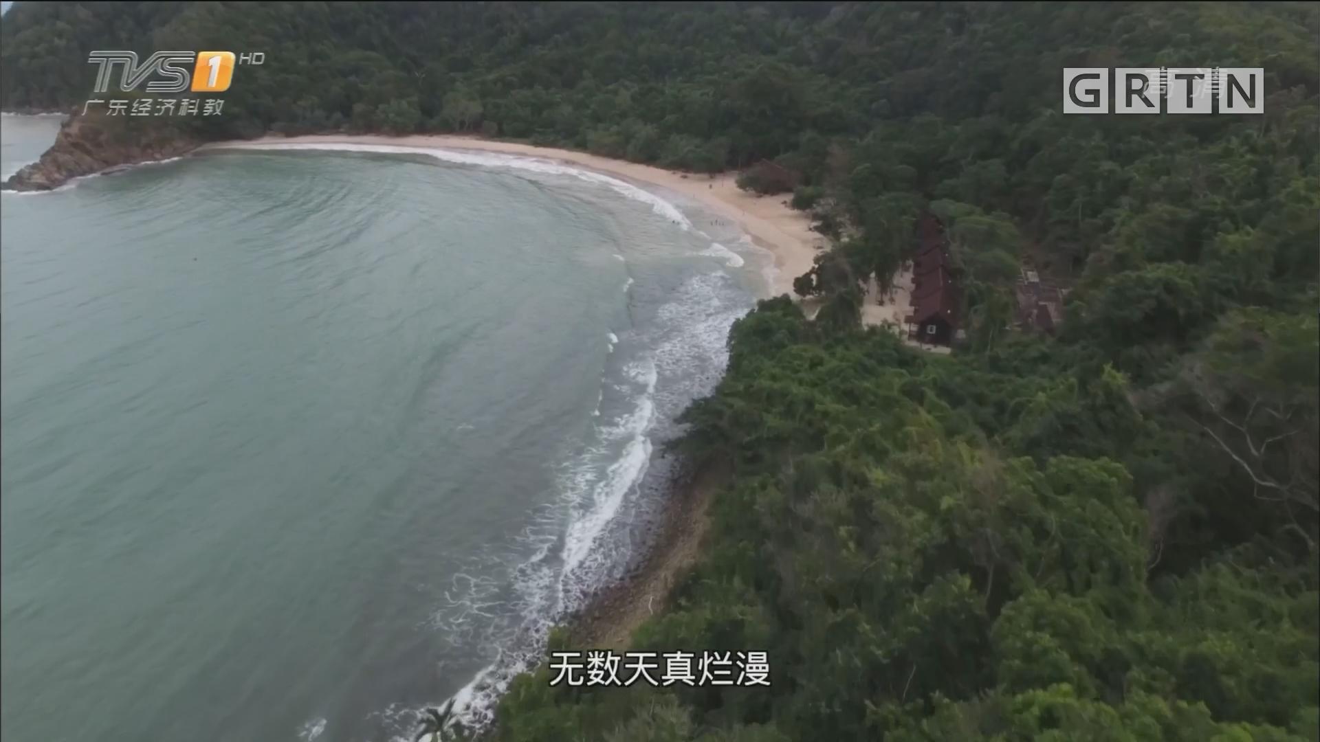 马来西亚——海豚岛