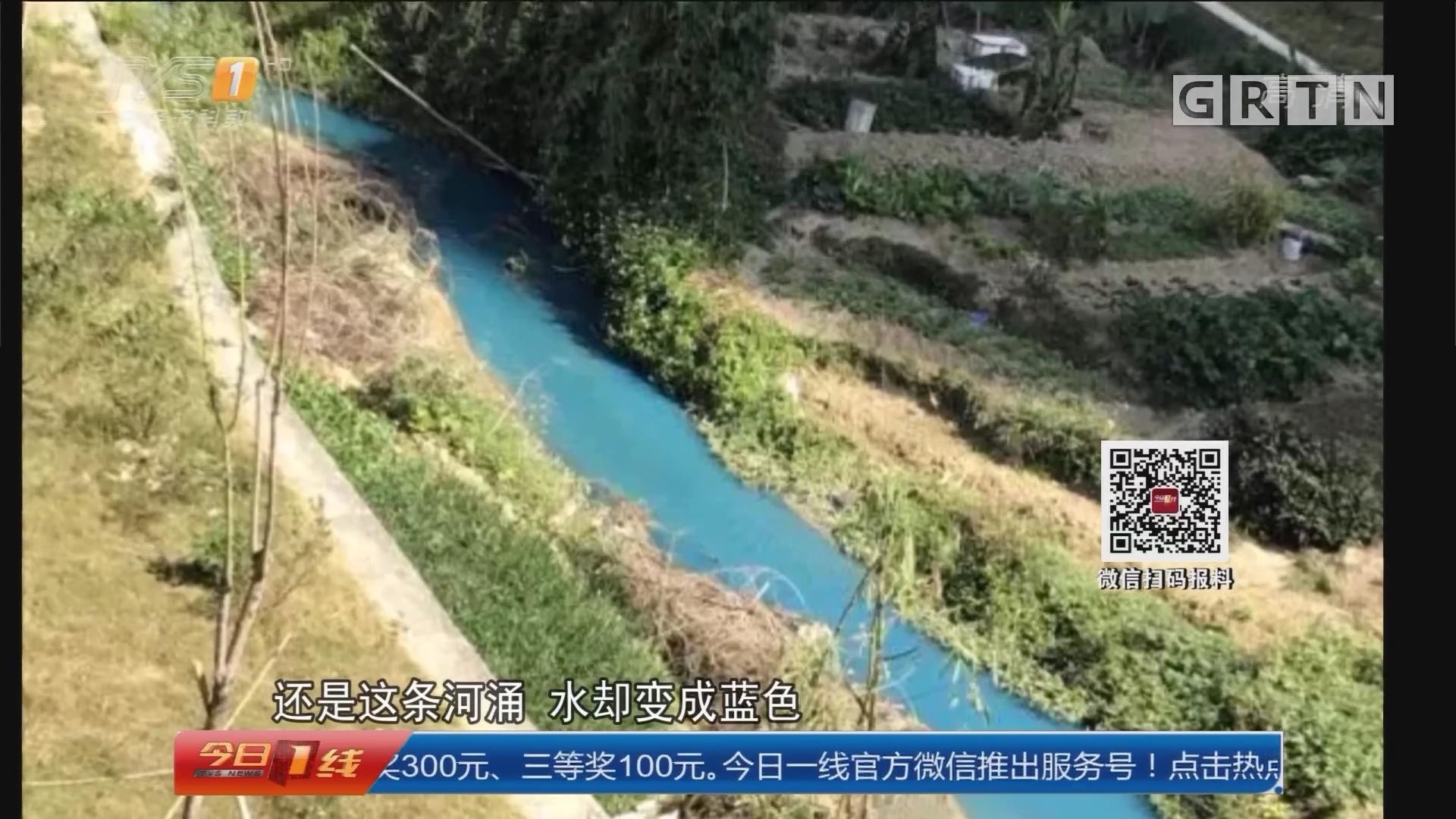 """广州黄埔:河涌变身""""蓝色多瑙河"""""""