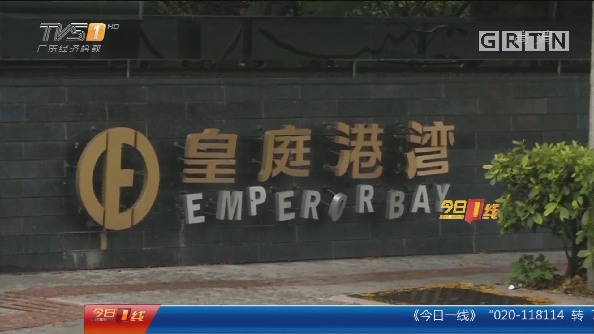 深圳南山:宠物店要收养流浪猫狗 业主反对