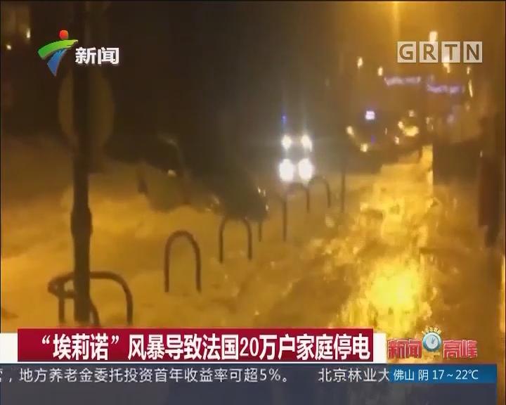 """""""埃莉诺""""风暴导致法国20万户家庭停电"""