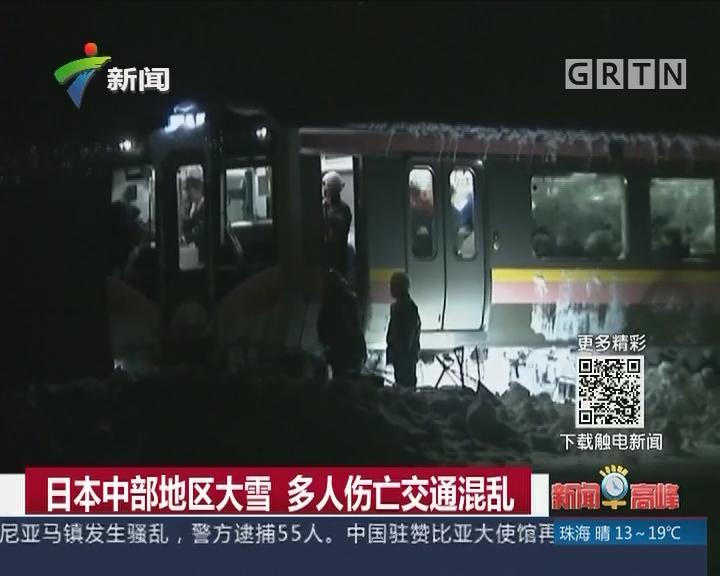 日本中部地区大雪 多人伤亡交通混乱