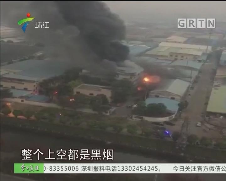 顺德:工厂清晨起火烧足4小时 无人员伤亡